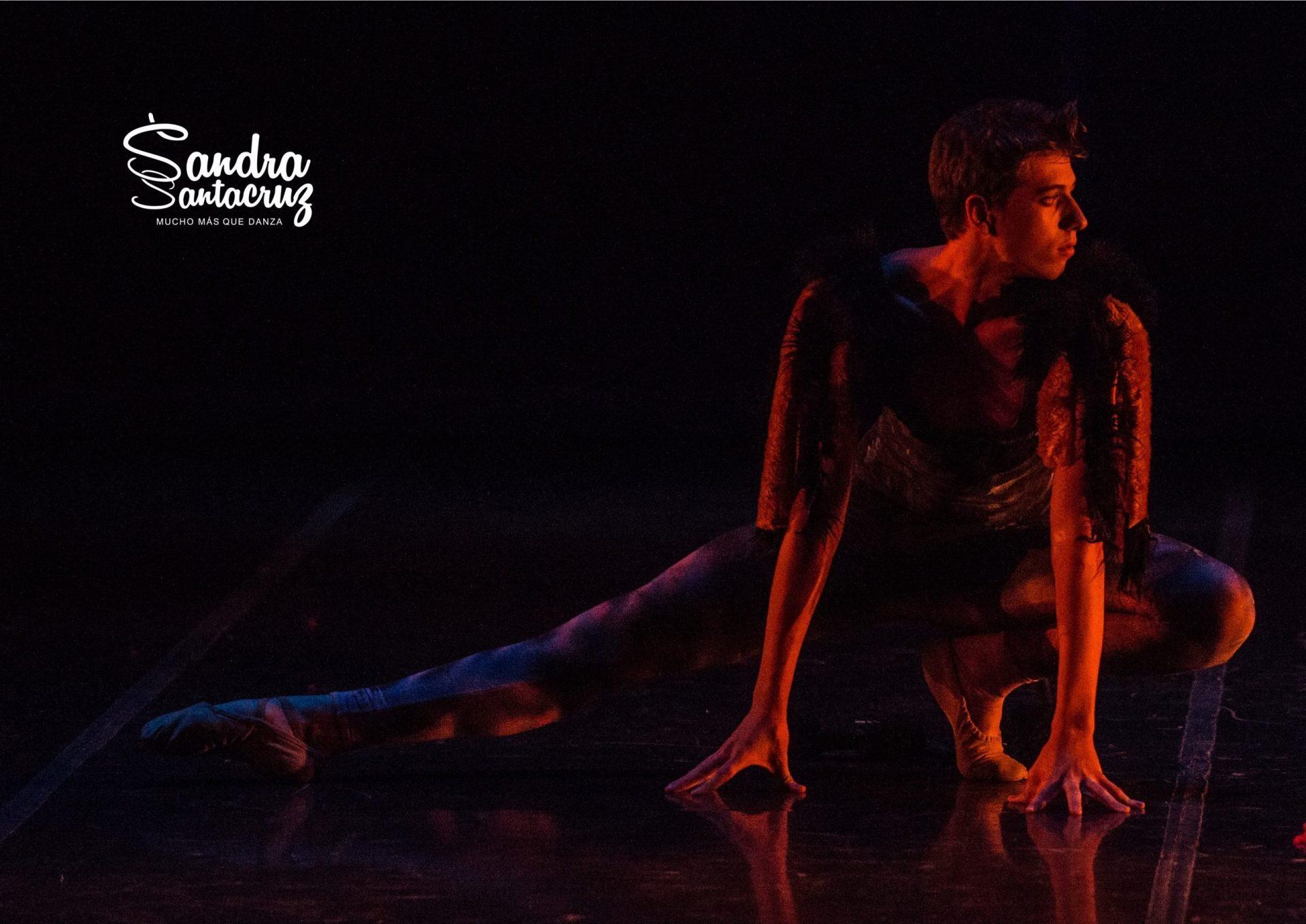 """Foto de la coreografía de """"Mi gato"""" del Centro de Danza Sandra Santa Cruz donde el bailarín posa como un gato que se arrastra por el suelo."""