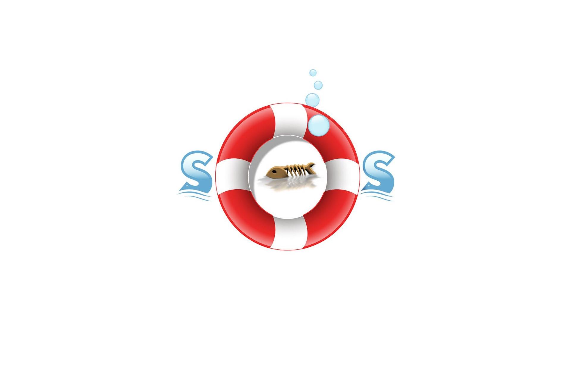 Si los peces hablaran_SOS-con-pez-espina