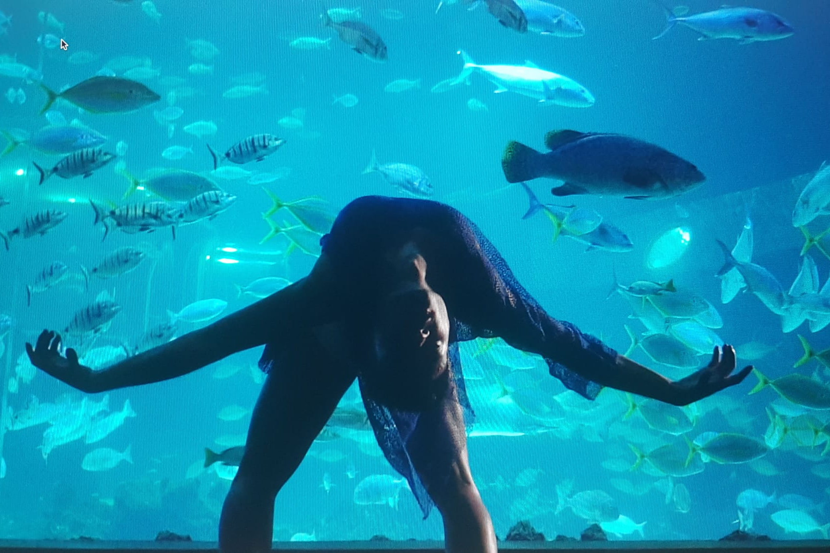 Foto de la grabación de Si los peces hablaran... en el Deep Sea de Poema del Mar para el Día Mundial de los Océanos