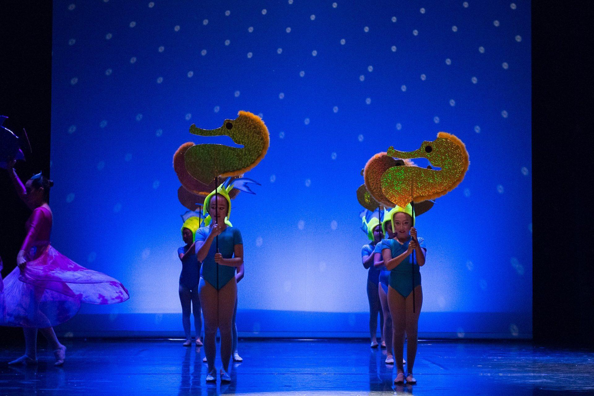 Centro de Danza Sandra Santa Cruz_Espectáculos